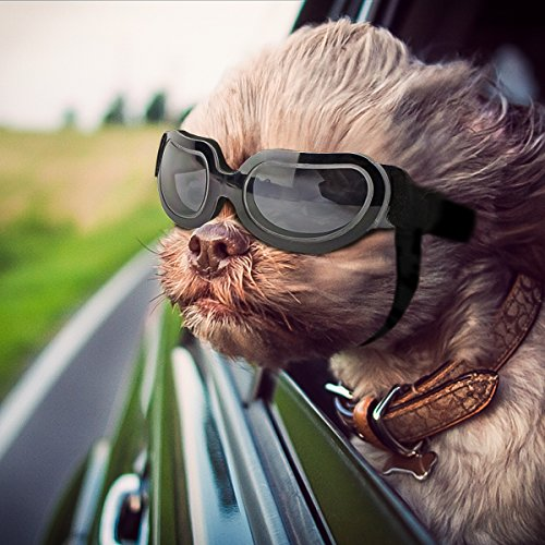 Namsan Dog Sunglasses Doggie Goggles for Small Dogs Puppy Goggles for Eye Protection, Black