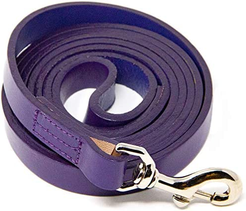 Logical Leather 6 Foot Dog Leash Best for Training Water Resistant Heavy Full Grain Leather product image