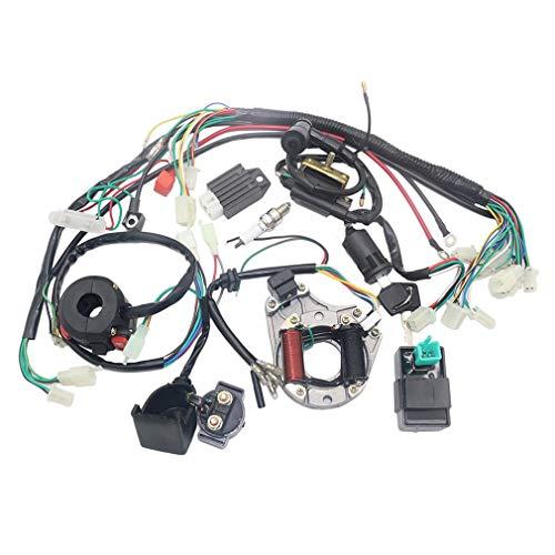 ELEPAWL Cableado eléctrico Bobina Estator CDI Cableado para 4 Tiempos ATV KLX 50 CC 70 CC 110 CC 125 CC Quad Bike Buggy Go Kart Pit Dirt Bikes