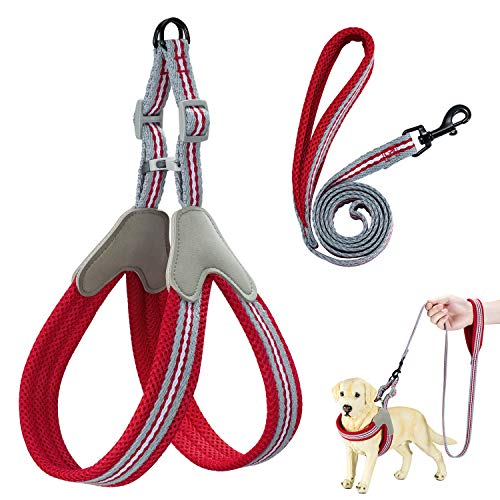 Wealer Dog Harness,The Most Easy to Control Adjustable Dog Harness and Leash Set,No Pull Breathable Soft Air Mesh Dog Vest Harness for Small and Medium Dogs