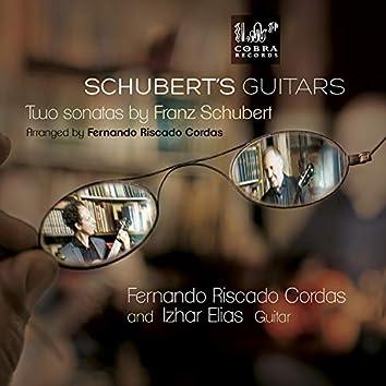 Schuberts Guitars