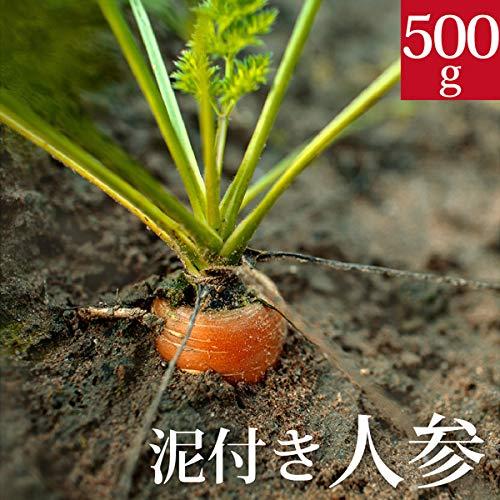 泥付き新人参500g 国産 無農薬【ゲルソン療法】にんじん ニンジン