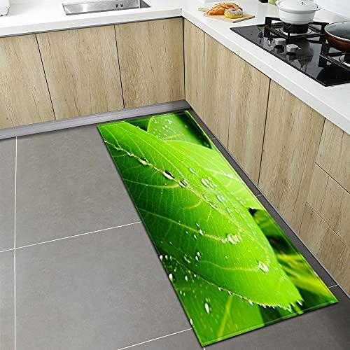 WESG Alfombrillas de Cocina Modernas, Alfombrillas de Entrada para el hogar, alfombras de decoración de Suelo para niños, alfombras Antideslizantes de baño NO.1 50X80cm