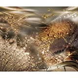 decomonkey Fototapete Pusteblume Abstrakt 350x256 cm XL Tapete Fototapeten Vlies Tapeten Vliestapete Wandtapete moderne Wandbild Wand Schlafzimmer Wohnzimmer Blumen