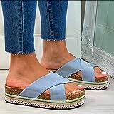 EVR Sandalias Mujer Verano Zapatos de Plataforma Cuña Zapatos de Boca de Pescado Playa Zapatillas Sandalias de Punta Abierta Fiesta Roman Tacones Altos Sandalias,Azul,36