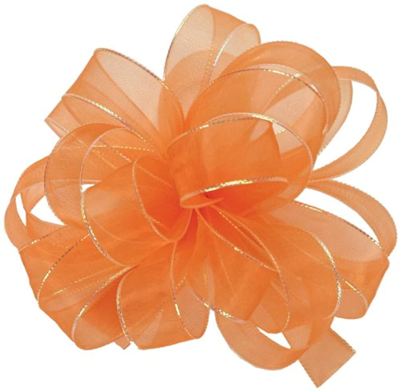 Offray Chic Sheer Craft Ribbon, 5/8-Inch by 25-Yard Spool, Orange with Opal Edge
