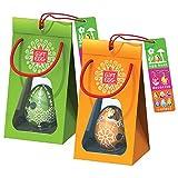 Paio di Uova di Pasqua: 2 labirinti da usarlo come giocattoli a sorpresa per la caccia all'uovo e come decorazione, in confezione regalo, pronti per essere dati come regali pasquali, Verde-Arancio