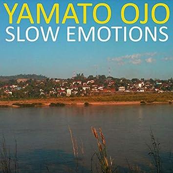Slow Emotions
