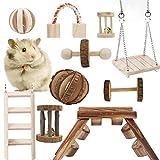 tarnel 10 pezzi giocattoli da masticare per criceti, giocattoli in legno naturale, cavia cincillà giocattoli da masticare, adatto per criceti, conigli e pappagalli per giocare