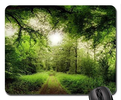 Yanteng Cojín de ratón Fino y Durable del Borde de la Costura, Camino a través de un Bosque mágico Cojín de ratón, cojín de ratón (cojín de ratón de los bosques)