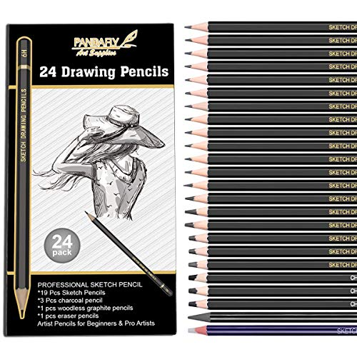 Professional Drawing Sketching Pencil Set, 24 Pieces Art Drawing Graphite Pencils(14B - 7H), Charcoal Pencils for Beginners & Pro Artists, Ideal for Drawing Art, Sketching, Shading