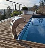 Cascada Inox 316 - Fuente de piscina para estanque, modelo delfín con huevo y...
