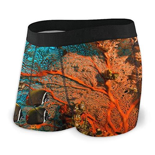Lawenp Calzoncillos Tipo bóxer para Hombre Ocean Sea Underwater Ultra Soft Ropa Interior para Hombre