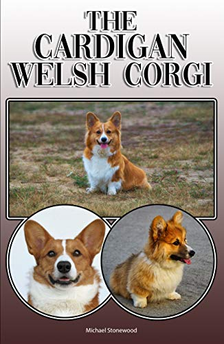 The Cardigan Welsh Corgi: A Complete and Comprehensive Owners Guide to: Buying, Owning, Health, Grooming, Training, Obedience, Understanding and Caring for Your Cardigan Welsh Corgi (English Edition)
