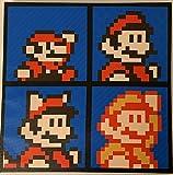 Super Mario Bros. Evolution of 8 Bit Mario 12x12 inch Canvas Wall Art Picture