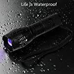 hanwey UV Flashlight Black Light, 365nm LED UV Torch Ultraviolet Blacklight Detector for Dog/Cat Urine, Pet Stains,Pet Clothing Food Fungus and Bed Bug,IP65 Waterproof,3 Modes 16