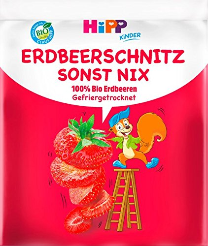 Hipp Kinder Knabberprodukte, Erdbeer-Schnitz sonst nix, 9er Pack (9 x 10g) - Bio