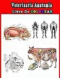 Veterinaria Anatomía Libro de Colorear: Una forma mejor y más fácil de aprender anatomía,+60 dibujos para colorear, libro para colorear de anatomía y ... estudiantes de veterinaria e incluso adultos