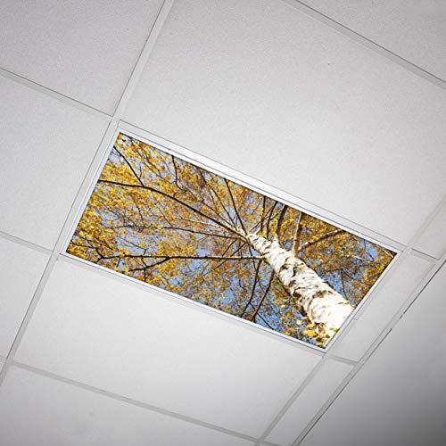 Octo Lights - Fluorescent Light Covers 2x4 - Fluorescent Light Filters - Ceiling Light Covers - for Classroom, Kitchen, Office, Tree 003