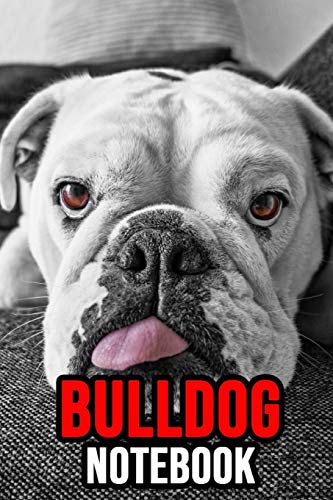 Bulldog Notebook: Journal / Notepad, Gifts For Dog Lovers (Lined, 6' x 9')