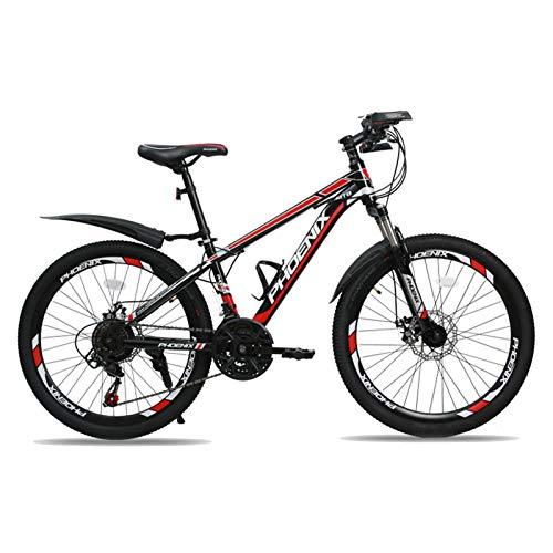 Axdwfd Bici per Bambini Bambini Bicicletta 22 Pollici, Ragazzi E Ragazze in Bicicletta, Adatto Ai Bambini 10-16 Anni, Blu, Rosso (Color : Red)