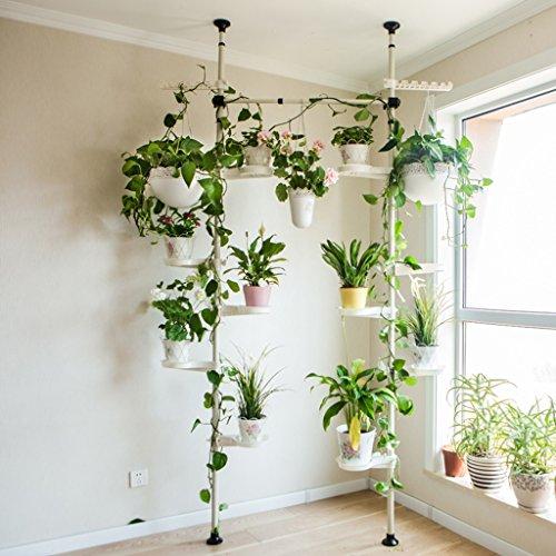 ZCJB Etagères de plantes 6 Support Multifonctionnel De Salle De Séjour D'intérieur De Fleur De Chlorophytum D'étagère De Fleur