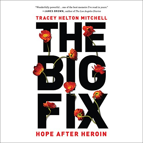 The Big Fix cover art