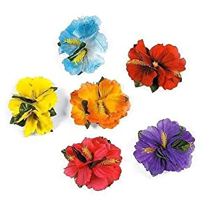Hula Girl Hibiscus Color Assorted Flower Island Theme Hair Clips Event Decoration Supplies (12 Pack)