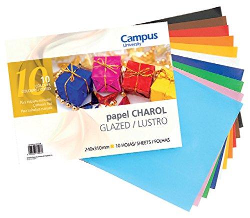 Campus University 630096 - Pack de 10 hojas de papel charol, 24 x 31 cm ⭐