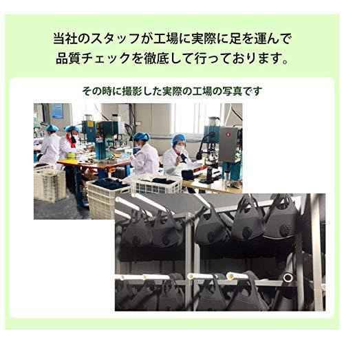 日本タイガー電器Santasan『換気口付き3D立体マスク3枚セット』