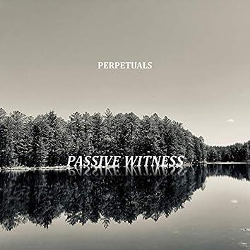 Passive Witness