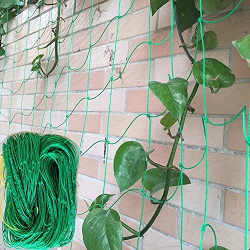 Dyda6 Pflanzennetz, Mehrzweck-Nylon-Spalier Netz für Ranken, Bohnen, Gemüse, Obst, Kletterpflanzen, Vogelschutznetz, Wie abgebildet, 1.8 * 0.9m