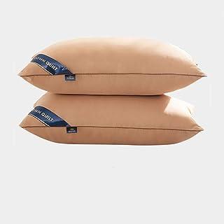LLKK D'oreillers en Duvet d'oie Blanche,Une Paire d'oreillers Moelleux,oreillers domestiques en Coton pour Adultes (2 pièces)