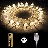 20 Foto LED clip luci della stringa per appendere quadri e Batterie Powered per San Valentino, Natale, compleanno, Party, Matrimonio (bianco caldo)