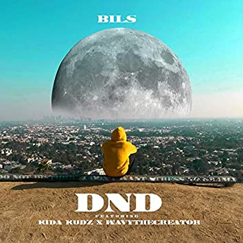 DND (feat. Kida Kudz & WavyTheCreator)