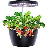 CRZJ Sistema di Coltivazione idroponica, Smart Garden con 3 modalità di Crescita, Kit di avviamento da Giardino per Erbe Indoor Facile da Usare, Famiglia