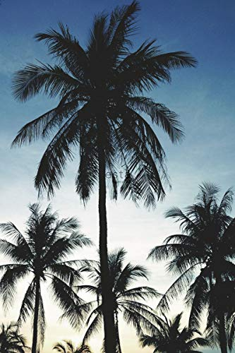 fotobehang palmbomen blauw, zwart en beige - 158849 - van ESTAhome