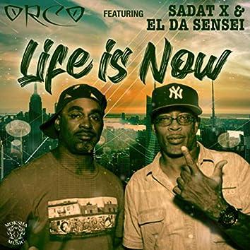 Life Is Now (feat. Sadat X & El da Sensei)