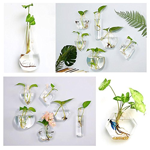 Niceen Wall Glass Vazen, Bubble Wall Terrariums, Geblazen Glas Terraria, Muur Succulente Planters (Geen Planten) Stijl 2