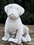 Beton Deko Figur Hund Boxer Welpe sitzend Knochen an vorderen Pfoten H 22 cm Dekofigur Gartenfigur
