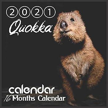 Quokka Calendar 2021  Quokka Australian Animal  8.5x8.5  Inch Wall 2021 Calendar