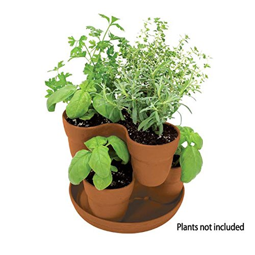 growing herbs indoors EMSCO Bloomers Stackable Flower Tower Planter – Holds up to 9 Plants – Great both Indoors and Outdoors – Terra Cotta