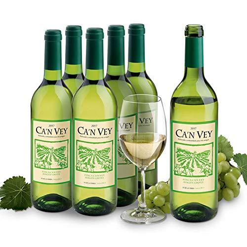 Aus eigenem Anbau: 6 Flaschen Weißwein aus Mallorca