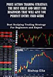 Price Action Trading Strategy: The Best Cheat and Sheet for Beginners That Will Give You Perfect Entry: User Guide: Best Scalping Trading Strategy for Beginners and Expert