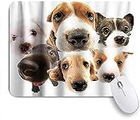 ZOMOY マウスパッド 個性的 おしゃれ 柔軟 かわいい ゴム製裏面 ゲーミングマウスパッド PC ノートパソコン オフィス用 デスクマット 滑り止め 耐久性が良い おもしろいパターン (好奇心が強い目を持つパグ犬かわいい動物)