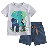 Fiream Baby Boy's Cotton Cute Short Sleeve Clothing Set (12-18Months, Set1)