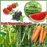 420個6種類の果物と野菜の種子、家庭菜園のイチゴ種子用の食用植物を育てるのが簡単
