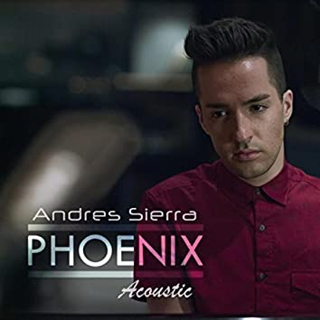 Phoenix Acoustic (feat. The Intellexz)