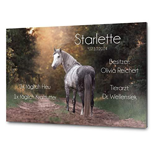 Pferdeschilder Boxenschild mit Foto und Wunschtext | AluDidond Alu Verbundplatte | 30x20 cm | sofort personalisierbar | inkl. Brandzeichen & Motiven