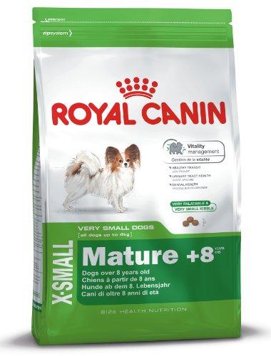 Royal canin X-small Mature +8 pienso para perros mini/toy ✅